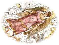 The Virgo Constellation